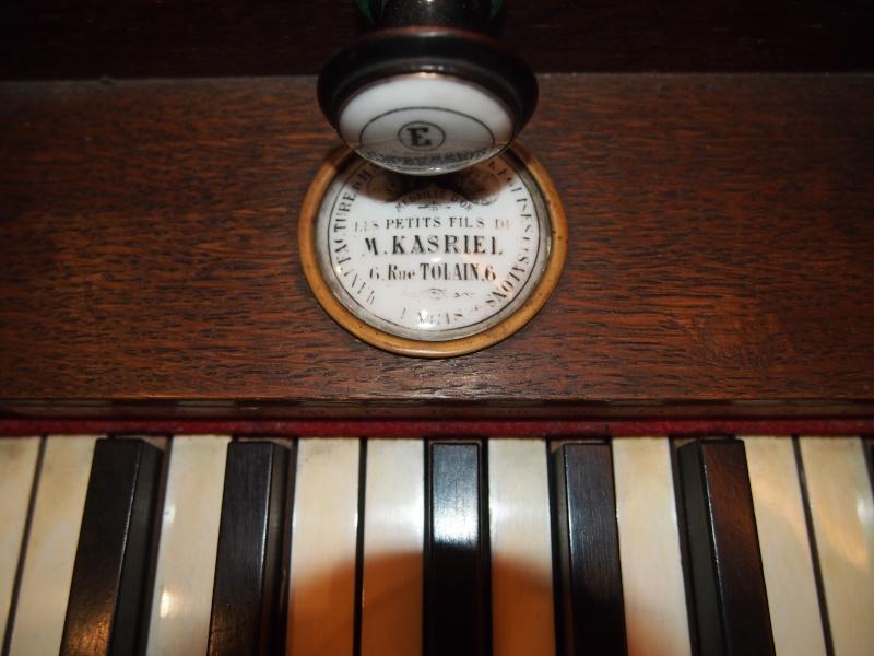 Kasriel magnifique P1010213