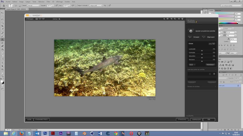 Comment corriger des photos sous-marines ? - Page 2 Captur10