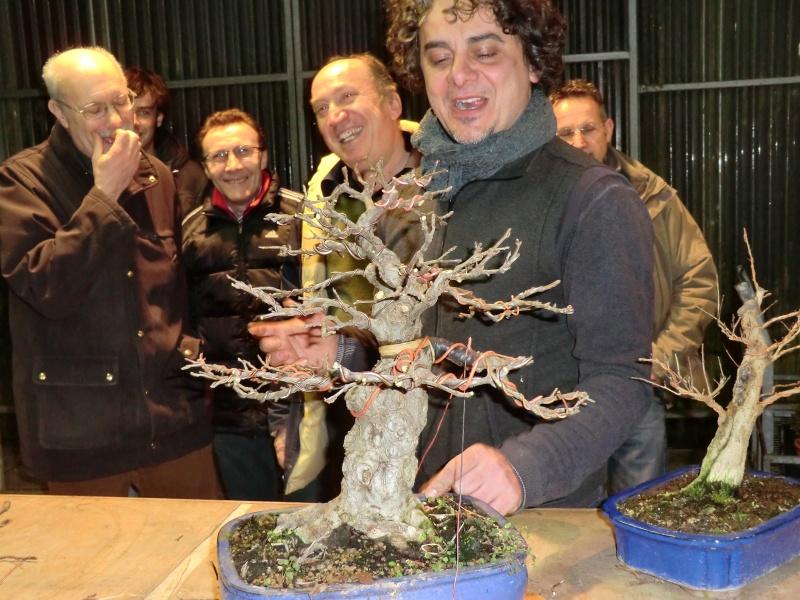 Piegatura di un grosso ramo al Bonsai Club Laudense Tutti_10