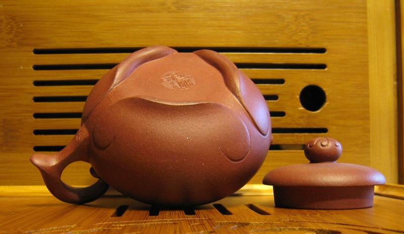 Non solo bonsai - La cerimonia del Tè Senza-13