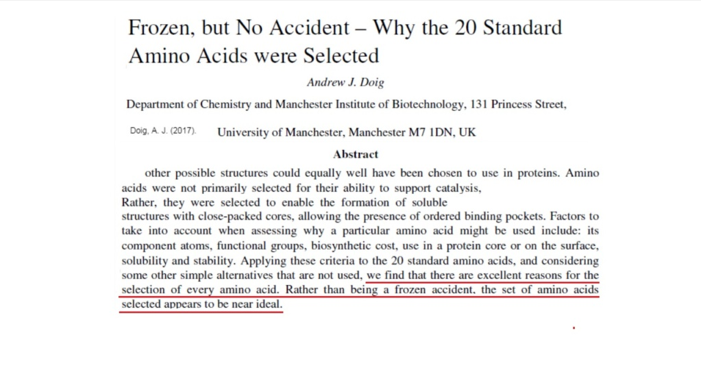 Chemical evolution of amino acids and proteins ? Impossible !! 3616