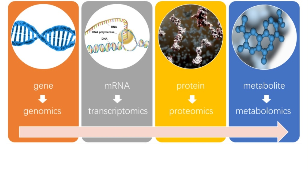 Chemical evolution of amino acids and proteins ? Impossible !! 5616