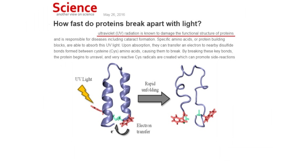 Chemical evolution of amino acids and proteins ? Impossible !! 6412