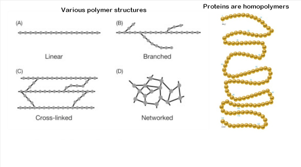 Chemical evolution of amino acids and proteins ? Impossible !! 6612