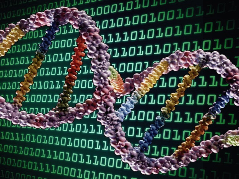 The four interdependent requirements to have an information transmission system Ai-dna10