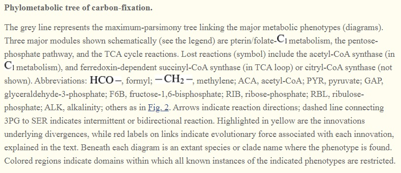 Carbon metabolism is the most basic aspect of life. Carbon17