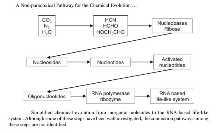 RNA & DNA: It's prebiotic synthesis: Impossible !!  Inorga10
