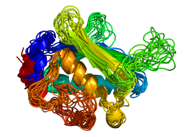 Protein flexibility, essential for function - more evidence of design Usage_10
