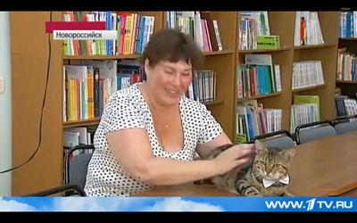 En Russie : le premier chat bibliothécaire  Kusiak11