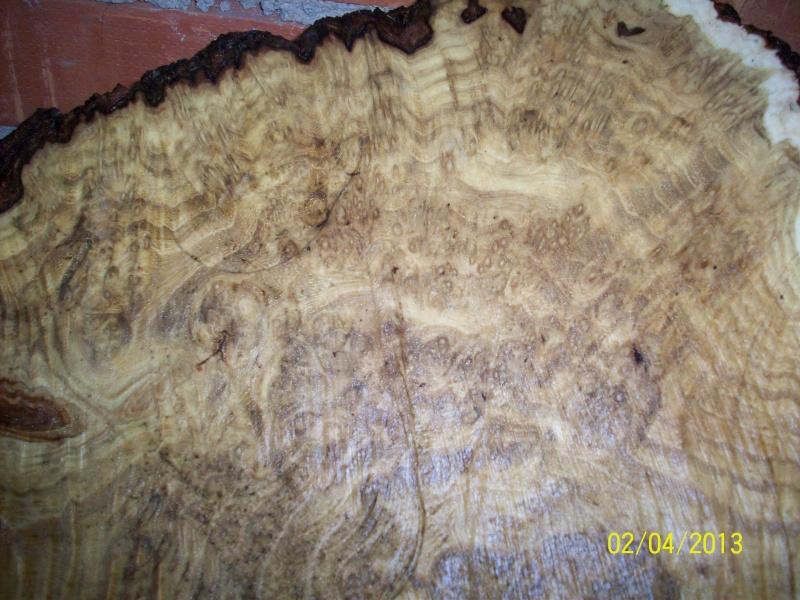Drva za drške by GAGY Acacia12