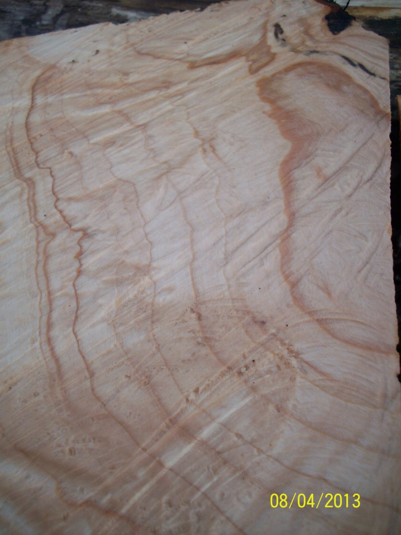 Drva za drške by GAGY Javor_12