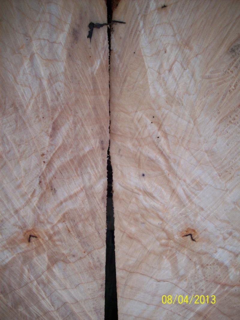 Drva za drške by GAGY Javor_13