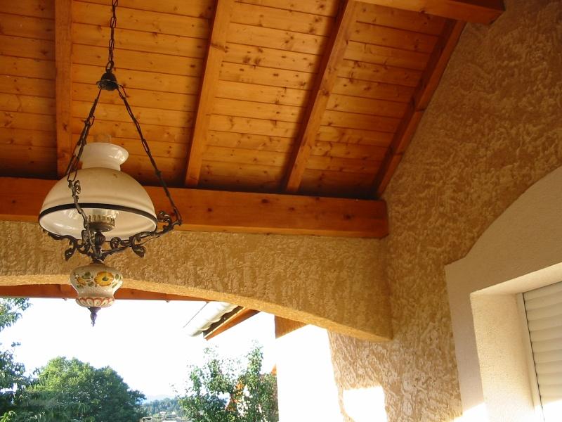 Un nid de guêpes sous l'avancée d'un toit sur terrasse Image_16