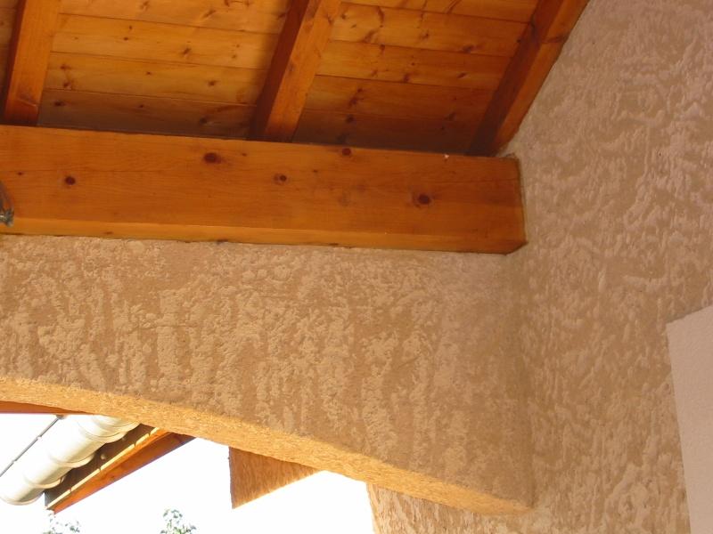 Un nid de guêpes sous l'avancée d'un toit sur terrasse Image_17