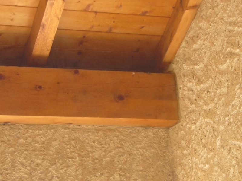 Un nid de guêpes sous l'avancée d'un toit sur terrasse Image_19