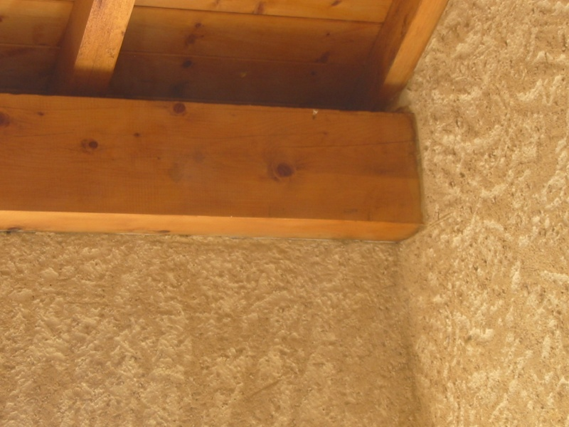 Un nid de guêpes sous l'avancée d'un toit sur terrasse Image_20