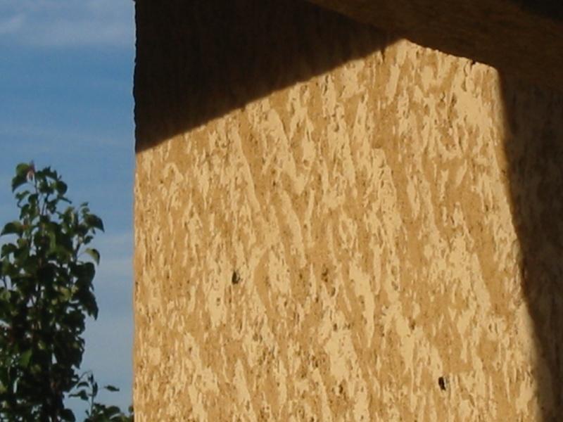 Un nid de guêpes sous l'avancée d'un toit sur terrasse Image_21