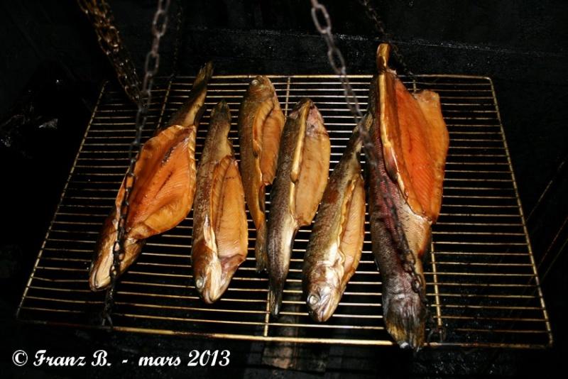 Fumer son gibier et son poisson Img_3011