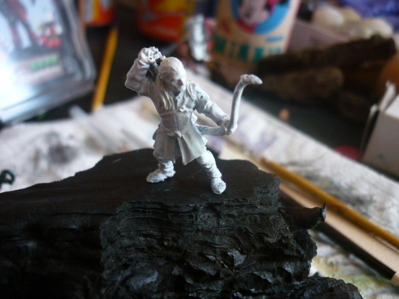 mes dioramas P1160772