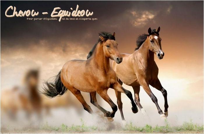 Chevow-Equideow
