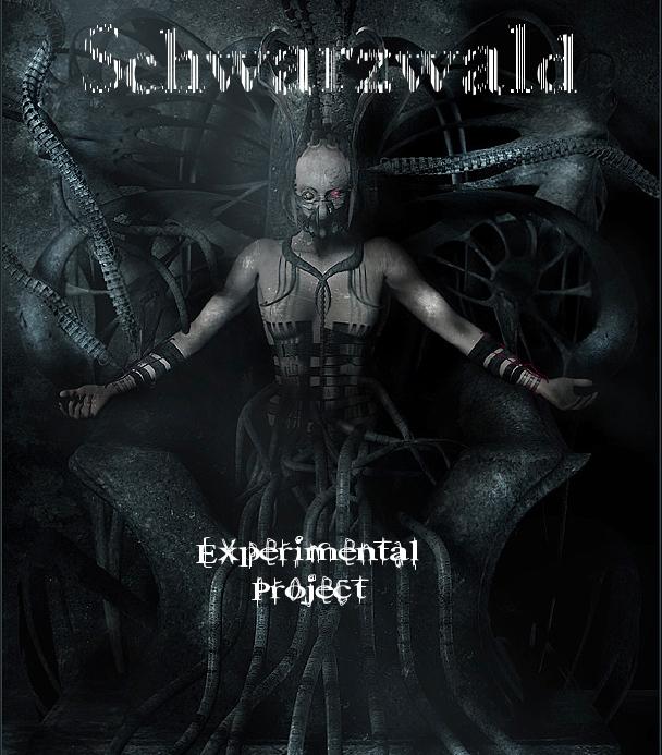 Schwarzwald Forum RPG
