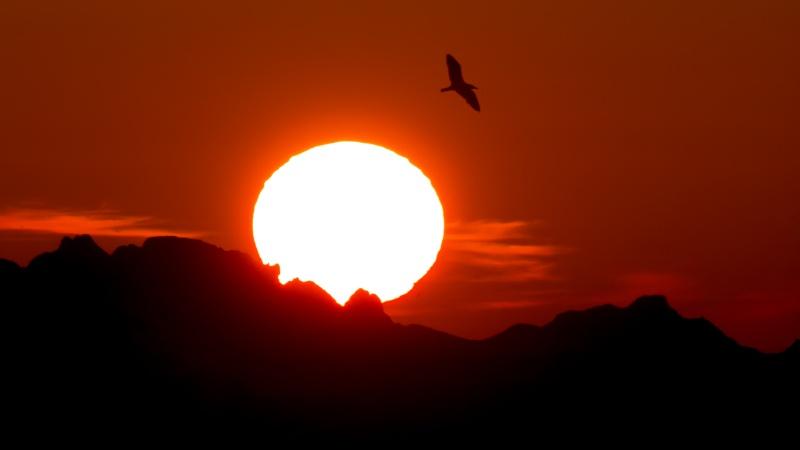 coucher de soleil 551511