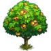 Vous cherchez un arbre ? Venez cliquer ici !!! Chestn10