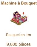 Machine à Bouquet Sans_337
