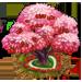 Vous cherchez un arbre ? Venez cliquer ici !!! Sugarc12