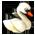 Lac des Cygnes => Plume de cygne Swanto10