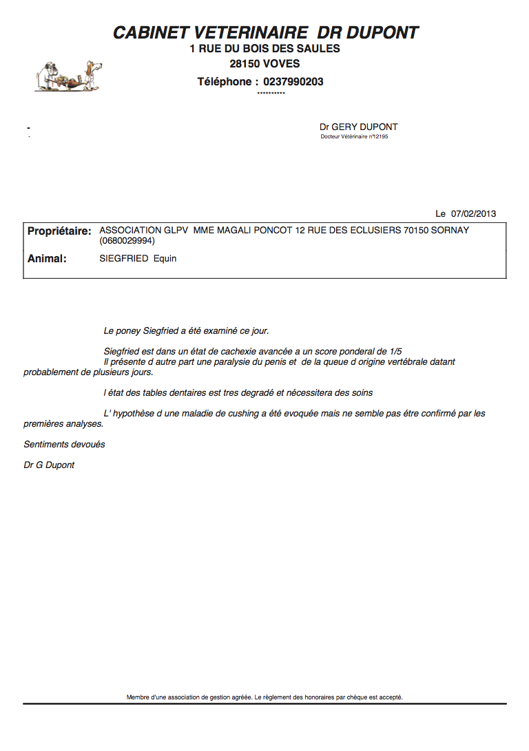 SIEGFRIED - Hongre poney ONC né en 1984 - Protégé GPLV Captur63