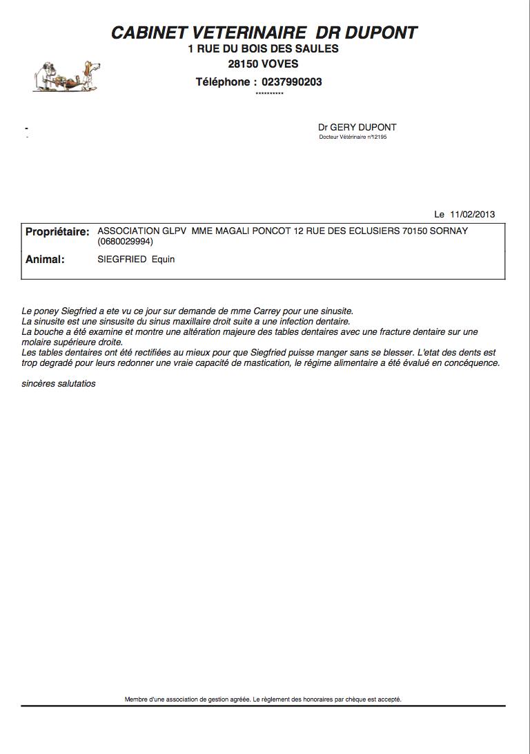 SIEGFRIED - Hongre poney ONC né en 1984 - Protégé GPLV Captur64
