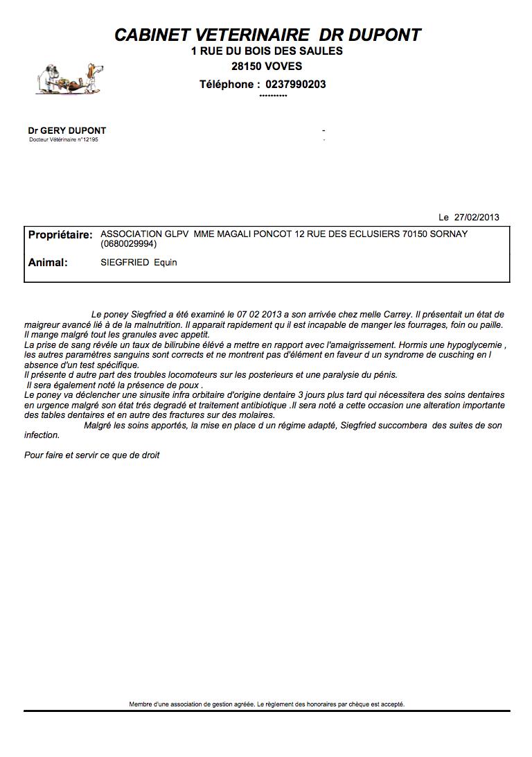 SIEGFRIED - Hongre poney ONC né en 1984 - Protégé GPLV Captur65