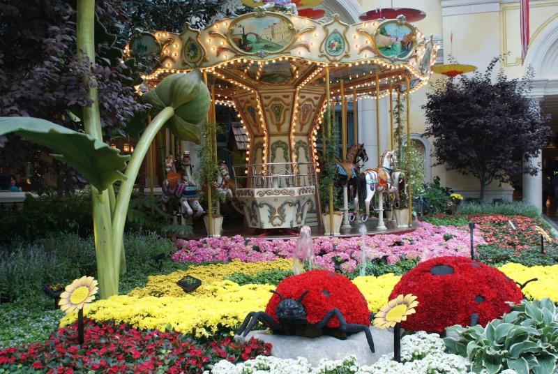 Un tour dans l'Ouest Américain : De Los Angeles à Las Vegas en passant par Disneyland - Page 5 Usa_2051