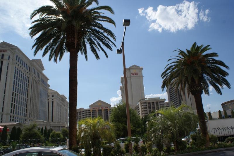 Un tour dans l'Ouest Américain : De Los Angeles à Las Vegas en passant par Disneyland - Page 5 Usa_2054