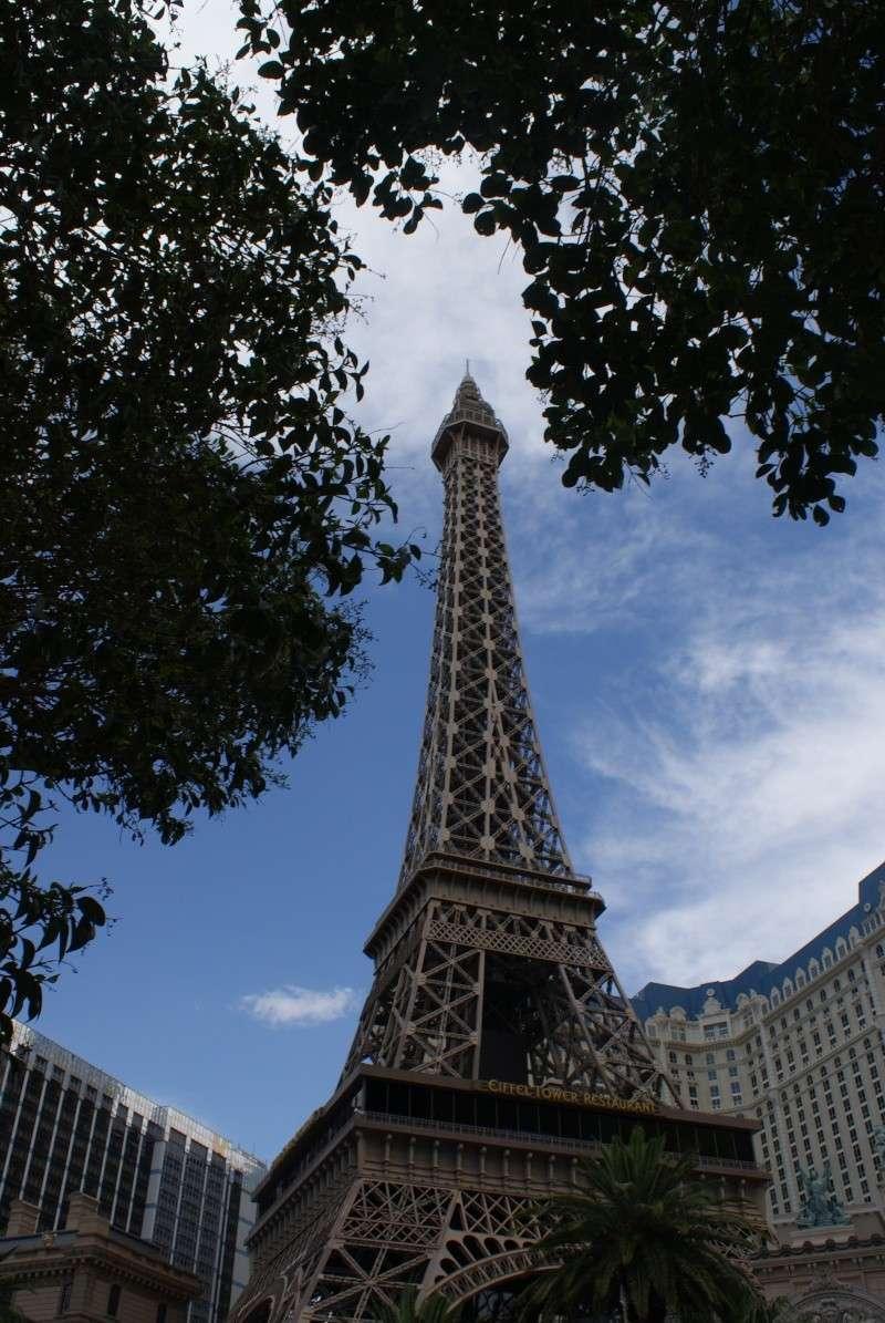 Un tour dans l'Ouest Américain : De Los Angeles à Las Vegas en passant par Disneyland - Page 5 Usa_2055