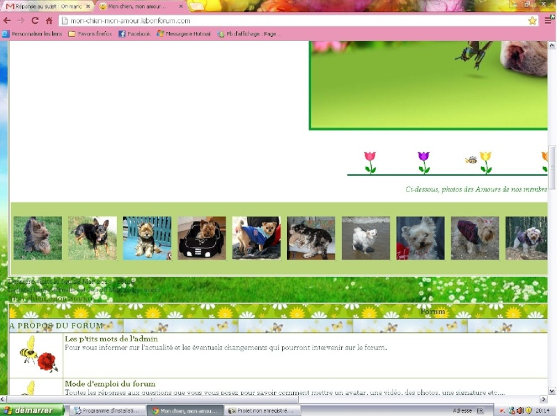 Pb d'affichage : Page d'accueil immense sous Google Chrome Chrome11