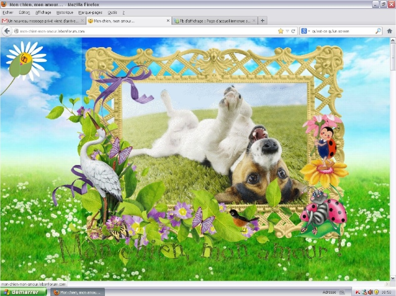 Pb d'affichage : Page d'accueil immense sous Google Chrome Firefo10