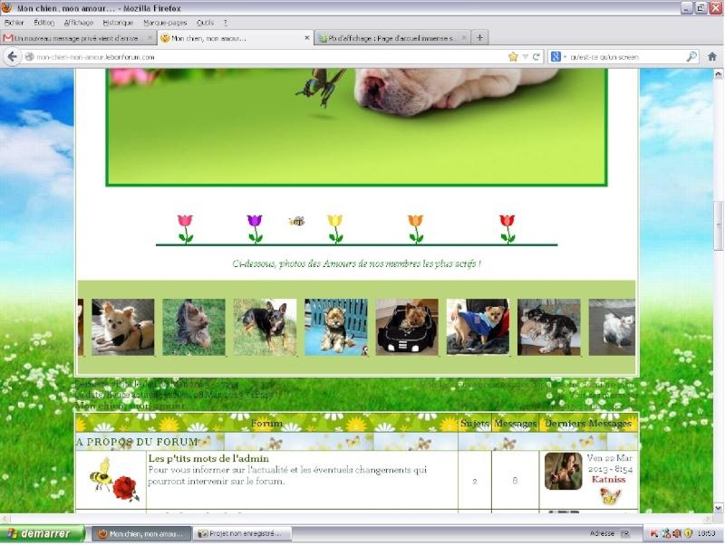 Pb d'affichage : Page d'accueil immense sous Google Chrome Firefo11