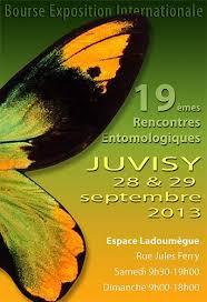 Bourse aux insectes de Juvisy 2013 Images14