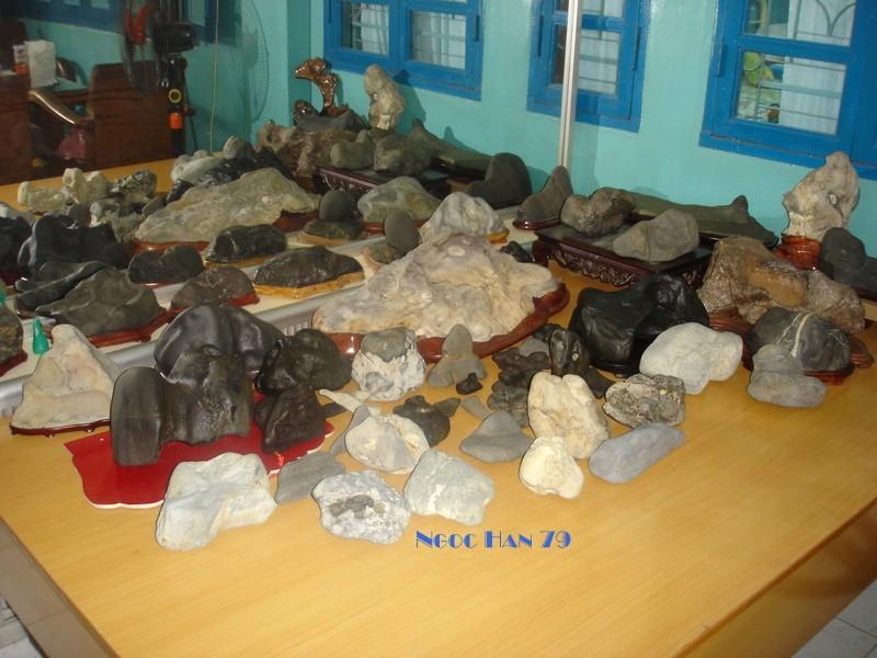 Nex suiseki- new stones search today. Dsc06610