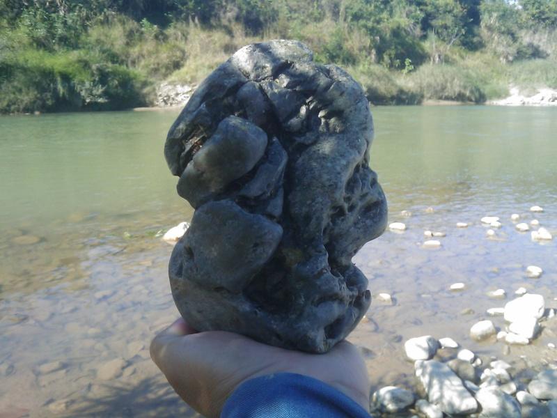 Nex suiseki- new stones search today. Image_79