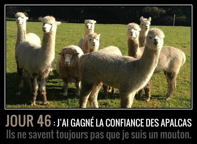 Quelle Horreur !!!!! 42337710