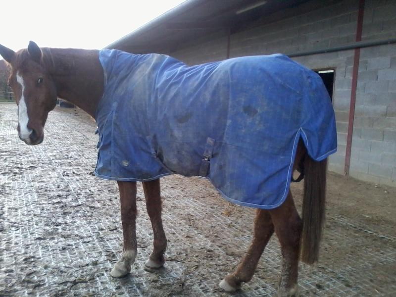 Acheter des couvertures pour cet hiver? - Page 2 Fedima10
