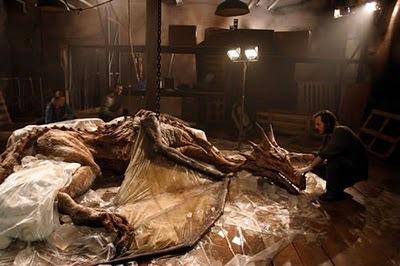 Fóssil de dragão é encontrado na China 117