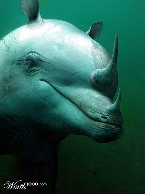 Golfinho Rinoceronte 125
