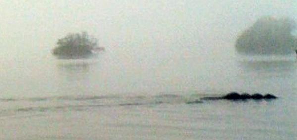 """Foto da versão inglesa do """"monstro do Lago Ness"""" 132"""