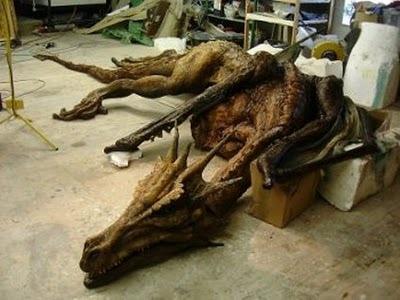 Fóssil de dragão é encontrado na China 213