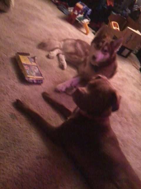 Bella and Jasper's scrapbook (Updated oct 1) Photo118