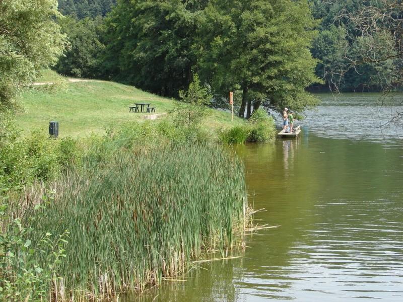 (Lac Des Sapins / Cublize 69550 ) Cubliz10